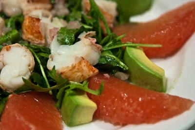 lobster, grapefruit, avocado salad
